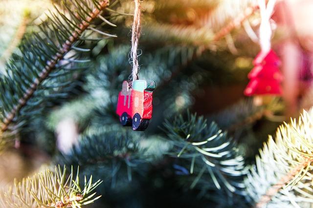 家庭用クリスマスツリーのレンタルは東京や大阪など地域差があるの?