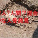 宇宙人か人間か?宇宙人のような頭蓋骨の形をした人骨発見。